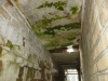 poor-condition-asbestos-board-ceiling-panels-to-external-link-corridor